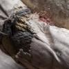 poulie_blanche_trois_reas_detail_sur_corde