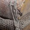 poulie_trois_reas_trois_couleurs_vue_detaile